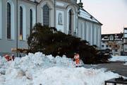 Mitarbeiter des Tiefbauamtes haben die Rottanne auf dem Klosterplatz am Mittwoch abgeräumt. (Bild: Jessy Nzuki)