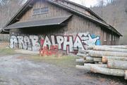 Ein Graffiti des verurteilten Sprayers bei der Feuerstelle am Wichelsee.Bild: PD/Kapo Obwalden
