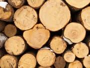 Die Jahrringe zeugen vom Trockenheitsstress der Bäume. (Bild: KEYSTONE/GAETAN BALLY)