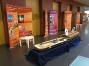 Das Modell der Arche Noah in der Ausstellung. (Bild: PD)