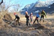Die Schüler rechen gemähtes Schilf im Reussdelta zusammen.