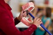 Luzern hat in der Zahnhygiene in den letzten Jahrzehnten gewaltige Fortschritte gemacht. (Bild: Gaetan Bally/Keystone)