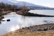 In Staad wurde das Ufer renaturiert. (Bild: Rudolf Hirtl)