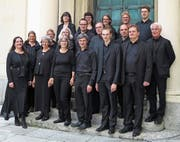 Das Vokalensemble Hottingen Zürich singt am Sonntag in der Klosterkirche Neu St.Johann. (Bild: PD)
