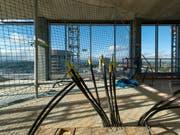 Die Schweizer Wirtschaft dürfte laut den Konjunkturforschern der ETH Zürich (KOF) an Schwung verlieren. Ein Bremsklotz ist die Lage auf dem Bau. (Bild: KEYSTONE/GEORGIOS KEFALAS)