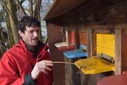 Der Winter fordert seine Opfer: Damit der Eingang zum Bienenstock nicht verstopft, muss Urs Lenz erfrorene Bienen entsorgen. (Bilder: Tobias Söldi)