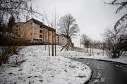 Auf dem Areal Hochhüsliweid in Luzern sollen 88 gemeinnützige Mietwohnungen entstehen - und zwar durch die Baugenossenschaft SBL. Ihr gehören bereits die Häuser, die hier im Hintergrund sichtbar sind. (Bild: Corinne Glanzmann (Luzern, 6. Januar 2019))