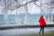 Ende Februar vor einem Jahr war es bitterkalt in der Ostschweiz. (Bild: Urs Bucher/26. Februar 2018)