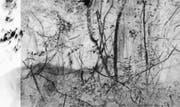 Poetische Bilder zur Poesie im Buch: Die erste der fünf Illustrationen aus dem Zyklus «Sea of Change», Lochkamera, 2017. (Bild: Regula Engeler)