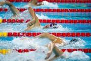Viele Menschen würden vom Schwimmsport reich werden - nur nicht die Athleten: Ein Bild der Kurzbahn-WM, die kürzlich in China stattfand. (Bild: Roman Pilipey/EPA (Hangzhou, 15. Dezember 2018)