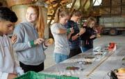 Die Schüler stellen selbst Pommes frites her. Als erstes schälen sie die Kartoffeln.(Bild: Salome Preiswerk Guhl)