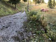 Von der Strasse abgekommen: Der Lenker wurde aus dem Auto geschleudert und starb später im Spital. (Bild: Kantonspolizei Wallis)