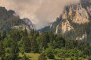 In den rumänischen Karpaten gibt es riesige Urwälder. Bild: Getty Images