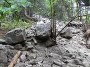 Am Fellihorn, oberhalb des Ortsteils Wiler, ereigneten sich in der Vergangenheit immer wieder Felsabbruch. Mit dem Neubau des Schutzdamms soll das Gebiet geschützt werden. (Bild: PD)