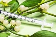 Die Misteltherapie spielt in der anthroposophischen Medizin eine wichtige Rolle. Die Wirksamkeit ist jedoch umstritten. Bild: Getty Images