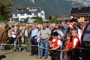 Viel Publikum war gestern an der Gamser Gemeindeviehschau anzutreffen.