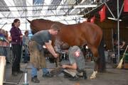 Peter Brülisauer (rechts) bei der finalen Prüfung, bei welcher direkt am Pferd geschmiedet wurde. (Bild: PD)