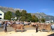 Die Kühe mit den höchsten Lebensleistungen, Soraja mit Christian Hardegger (links) und Rusta mit Hans Scherrer.