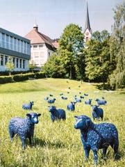 Die Fotos im Budgetbericht der Gemeinde Uzwil zeigen auf, wie und wo die blauen Schafe künftig «weiden» und den Grünraum zwischen Uzwil und Niederuzwil aufwerten könnten. (Bild: Andrea Häusler)