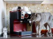 Die Verkäufer von Haushaltsgeräten wie Kaffeemaschinen zeigen sich mit der Ertragslage zufrieden. (Bild: KEYSTONE/ALESSANDRO DELLA BELLA)