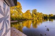 Leserbild. Den goldenen Herbstmorgen fotografierte Christian Wild auf Drei Weieren.