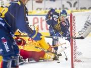 HCD-Stürmer Mattias Tedenby erzielt das 1:0 gegen Biels Goalie Elien Paupe (Bild: KEYSTONE/GIAN EHRENZELLER)
