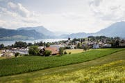 Geht es nach den Initianten, Grünen und SP, sollen im Kanton Luzern künftig harte Regeln im Umgang mit Kulturland gelten. Im Bild: die Gemeinde Meggen. (Bild: Manuela Jans-Koch, 18. Juli 2019).