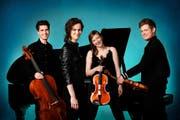 Das vierköpfige Notos-Quartett. (Bild: PD)