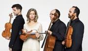 Das Merel-Quartett mit (von links) Edouard Mätzener, Mary Ellen Woodside, Rafael Rosenfeld und Alessandro D'Amico. Bild: PD