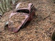 Der VW-Brezelkäfer stand seit 1964 im Bündner Wald. (Bild: PD)