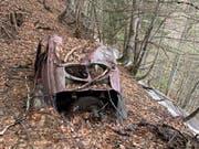 Heckansicht: Der VW-Bretzelkäfer stand seit 1964 im Bündner Wald. (Bild: PD)