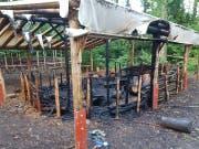 Der zerstörte Unterstand im Waldkindergarten Alpnach. (Bild: PD)
