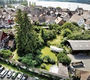 Blick über die Steckborner Altstadt Richtung Feldbach.Bild: Andrea Stalder