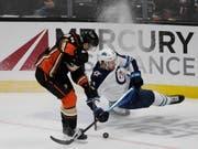 Die Winnipeg Jets mit Verteidiger Tucker Poolman gerieten gegen die Anaheim Ducks ins Straucheln (Bild: KEYSTONE/FR170211 AP/ALEX GALLARDO)
