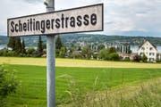 Die Frage, wie die Scheitingerwiese in Steckborn überbaut werden soll, ist noch lange nicht geklärt. (Bild: Reto Martin)