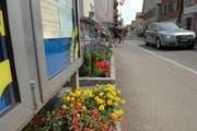 Die Seestrasse in Berlingen. (Bild: Nana do Carmo)