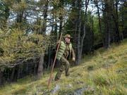 Immer wieder werden Fotos des russischen Präsidenten beim Abenteuerurlaub veröffentlicht. Seinen 67. Geburtstag feierte er beim Pilzesammeln in Sibirien. (Bild: KEYSTONE/EPA SPUTNIK POOL/ALEXEY DRUZHINYN /SPUTNIK/KREMLIN / PO)