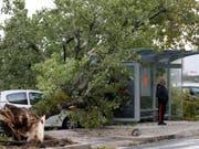 Die heftigen Winde haben in Bayonne, im Südwesten Frankreichs, einen Baum entwurzelt. (Bild: Keystone/AP/BOB EDME)