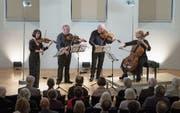 Das Brodsky Quartet aus Grossbritannien beim Auftritt im Marianischen Saal in Luzern. Bild: Dominik Wunderli (Luzern, 3. November 2019)