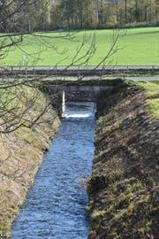 Diese Betonbrücke bei der Einmündung des Steinenbachs in den Rheintaler Binnenkanal muss wegen ihres schlechten Zustandes neu gebaut werden.