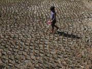 Durch das Wetterphänomen El Niño verschieben sich weltweit Wetterbedingungen. In einigen Weltregionen sind Dürren die Folge, in anderen Überschwemmungen. (Bild: KEYSTONE/EPA/ADOLFO ESPINOSA)