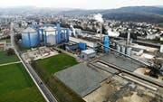 Die Zuckerfabrik in Frauenfeld. Bild: Reto Martin.