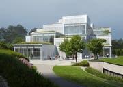 So soll das fertige Learning Center aussehen. (Visualisierung: Sou Fujimoto Architekten)