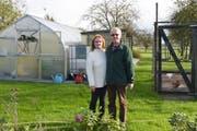 Erna und Reinhold Scherrer vor ihrem zwölf Jahre alten Gewächshaus und dem Hühnerhaus in ihrem Garten. (Bild: Mario Testa)
