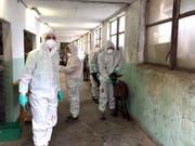 145 Ziegen mussten im Puschlaver Betrieb wegen der Erkrankung an Paratuberkolose getötet und entsorgt werden. (Bild: ALT)