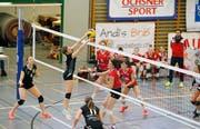 Volleyball: VBC Steinhausen - VBC Zürich UnterlandIm Bild: Am Ball Lisa Adler (Bild: Stefan Kaiser (Zug, 20. Januar 2019))