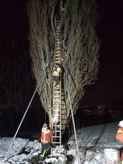 Die Feuerwehr Grabs während der Rettungsaktion. (Bilder: pd)