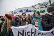 Zweite Klimademonstration beim Pavillon am Nationalquai in Luzern. (Bild: Pius Amrein (2. Februar 2019))