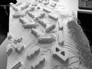 Wohnen am grünen Hang: Die fünf neuen Mehrfamilienhäuser (ganz rechts) der Wolfganghof-Siedlung in Haggen im Modell. (Bild: PD)