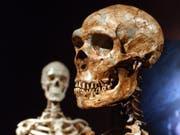 Neandertaler und moderne Menschen haben mehr gemeinsam als oft gedacht. (Bild: KEYSTONE/AP/FRANK FRANKLIN II)